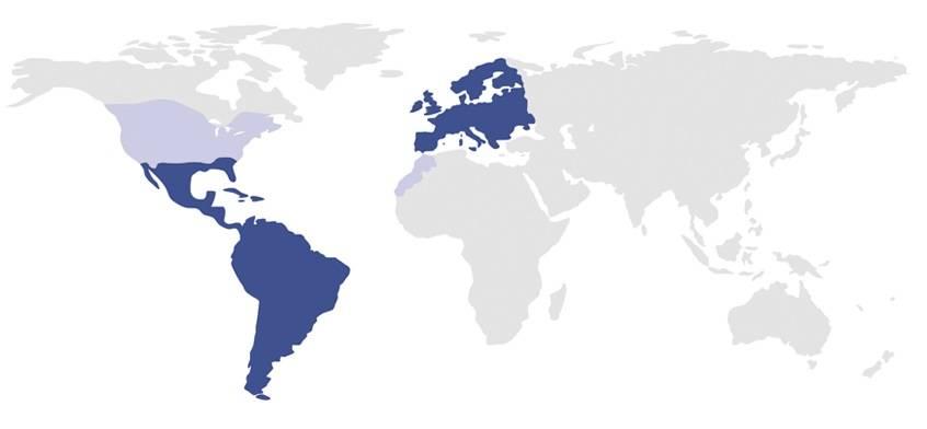 Oficinas Auxadi en el mundo