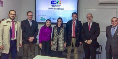 Auxadi participa del Comité de Energía de la Cámara de Comercio Brasil-España (CCBE)