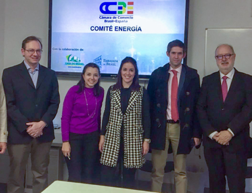 Auxadi participates in the Energy Committee of the Chamber of Commerce Brazil-Spain (CCBE)