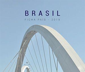Ficha País Brasil